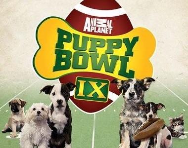 TV Review: Man's Best Friend vs. The Super Bowl
