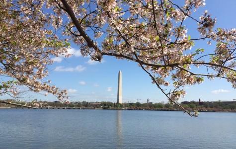 Photo Slideshow: Eagle Eye staff and DE US History class visit Washington DC