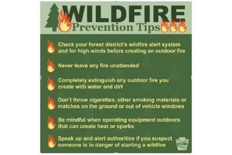 Local Fire Companies Stress Wildfire Prevention