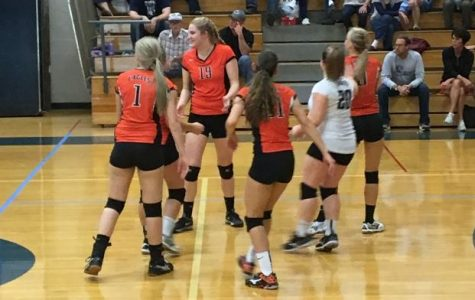 Lady Eagles Volleyball Take Hard Loss to Bearcats