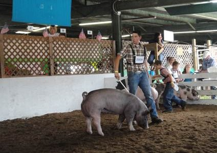 Tag Day is a Huntingdon County Fair tradition for FFA members