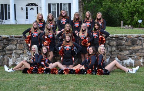 Cheering All the Way Home!  Cheerleaders place at local competition