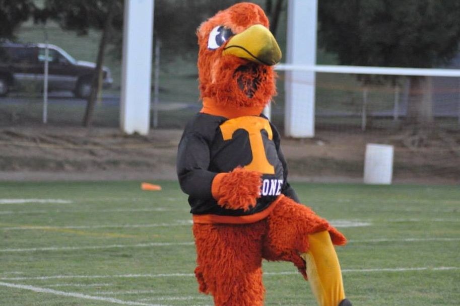 Senior mascot, Kristian Cowher performs an energetic dance to cheer up the crowd at a Friday night football game