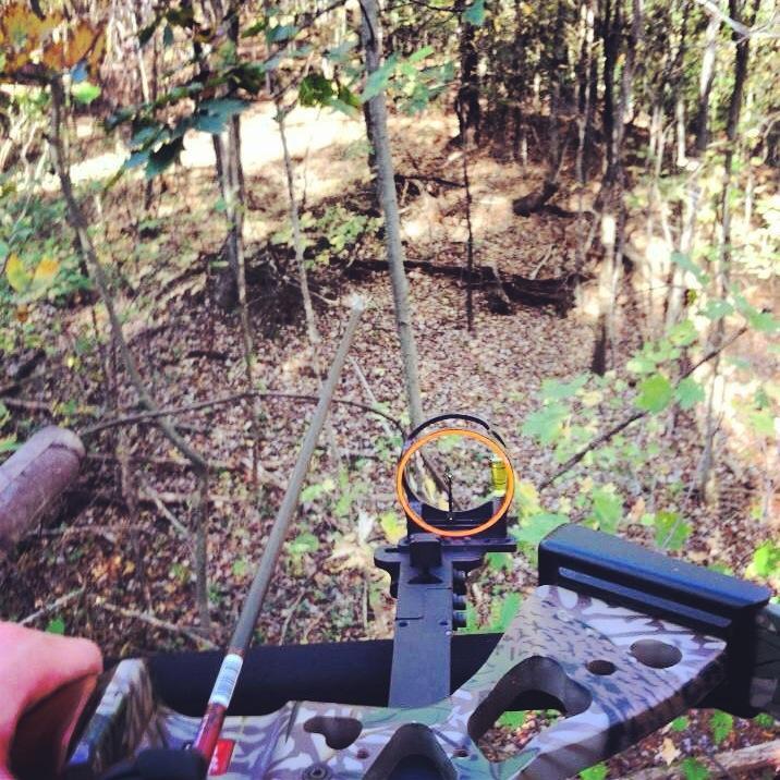 Tips for a Successful Archery Season