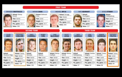 Soellner and Politza make 2015 Altoona Mirror All-Star Team