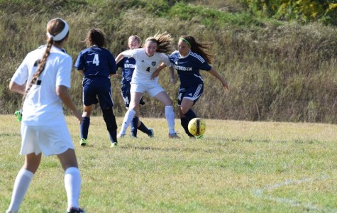 Lady Eagles fall to Lady Rams in conference match