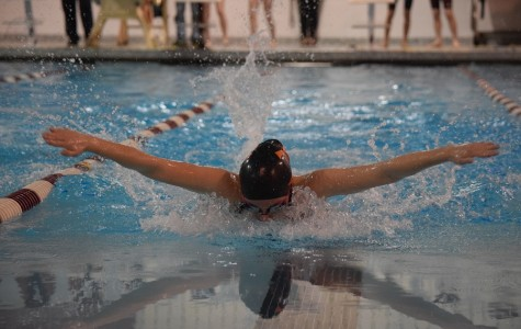 Swimming Loses Final Meet to Altoona; Districts in the Near Future