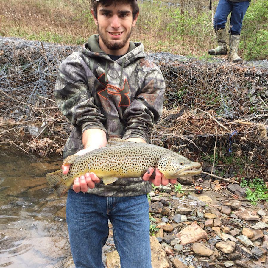 Zanes 20 inch brown trout caught in Schell Run