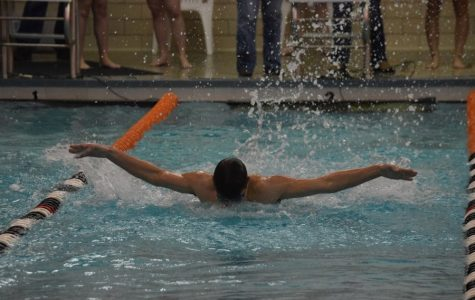 Hollidaysburg Sinks Tyrone Swim Teams; Slobodik and Decker Notch Double Wins