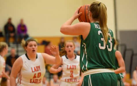 Juniata Valley Stings Lady Eagles