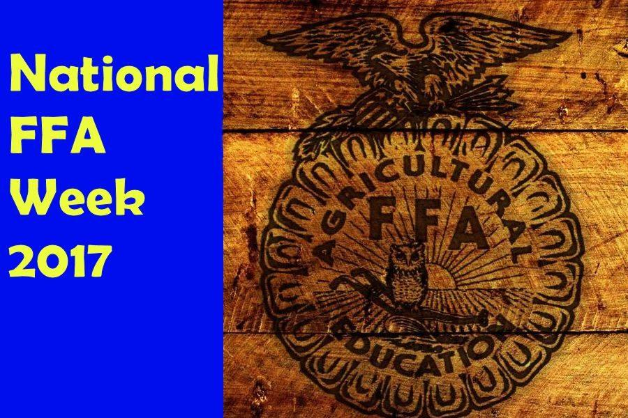 Celebrating FFA Through Greenhand Games and Agricultural Apparel