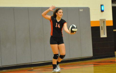 Alexis Umholtz: Volleyball