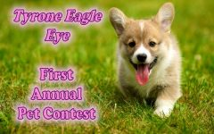 Eagle Eye Valentine's Day Pet Photo Contest
