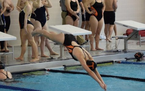 Talented Tigersharks Outswim Tyrone; Eagles Hope to Improve Throughout Season