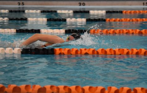 Tyrone Swimming defeats Cambria Heights; 2-1 Winning Record Returns