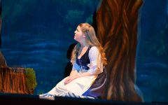"Photo Slideshow: Sneak Peek of ""Into the Woods"""