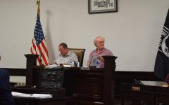 Borough Council Discusses Stray Cats and Public Funding for the Library
