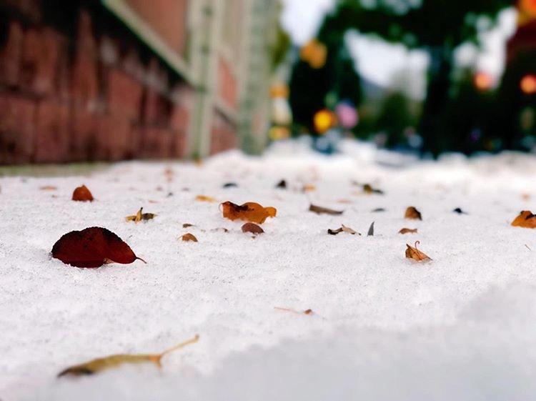 Snow-Fall