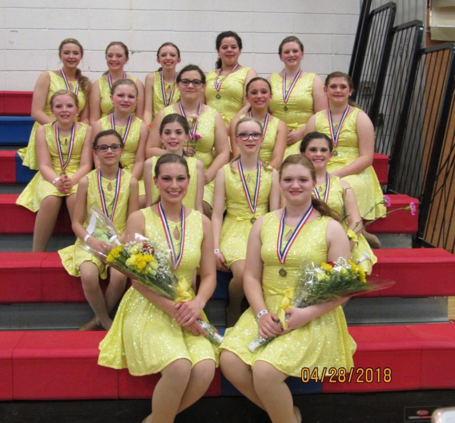 Members of the Tyrone Tyrone Star-Lite Twirlers are looking forward to the start of the 2019 season.