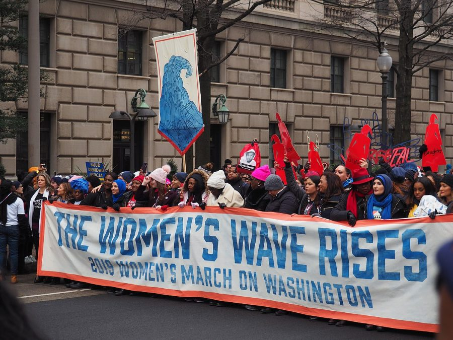 Protesters+at+the+2019+Women%27s+March+on+Washington%2C+D.C.