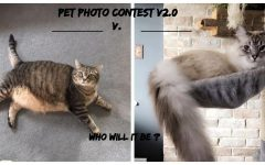 Second Annual Eagle Eye Valentine's Day Pet Photo Contest