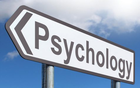 DE Psychology: A Great Introduction to the Field