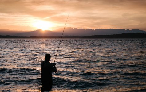 To Fish or Not To Fish? That Is Not a Question