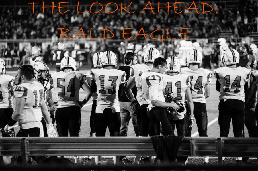 The Look Ahead: Bald Eagle