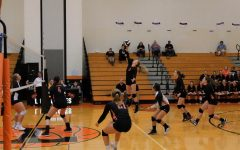 Lady Eagles Out Serve the Lady Bison
