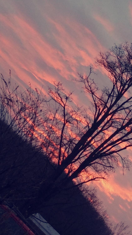 a beautiful sky picture taken by Xena Sieminski