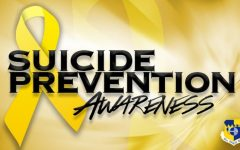 Suicide is now the 10th leading cause of deaths within the United States and the suicide death rates are drastically rising.