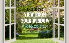 Photo of the Week Contest: A View From Your Window