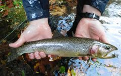Anglers in Pennsylvania will get to hit the streams two weeks earlier this year due to a change in the start date for trout fishing in PA.