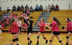 Lady Eagles Clip Bald Eagles in Three Sets