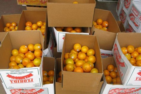 Tyrone FFA Kicks Off Annual Fruit Sale